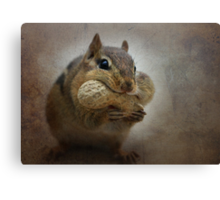 Chipster Canvas Print