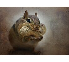Chipster Photographic Print