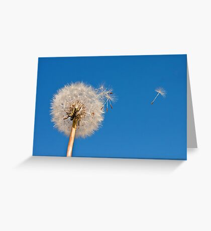 Go Forth And Multiply Greeting Card