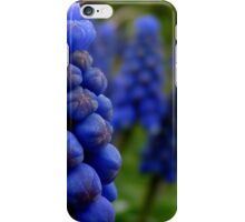 Blossoms as fruit - bunches of grape hyacinth iPhone Case/Skin