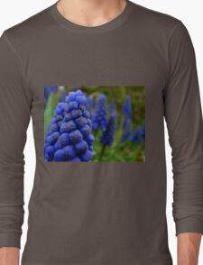 Blossoms as fruit - bunches of grape hyacinth Long Sleeve T-Shirt