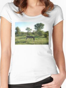 grazing Women's Fitted Scoop T-Shirt