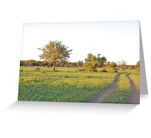 into the bush, madiwke, south africa Greeting Card