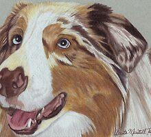 Australian Shepherd Vignette by Anita Meistrell Putman