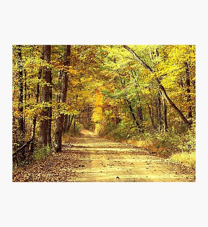 Rural Dirt Road in Madison county, Arkansas Photographic Print