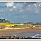 Bamburgh castle and shore by almaalice