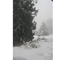 """Snowing Heavily"" Photographic Print"