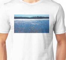 Boyer Lake, Minnesota Unisex T-Shirt