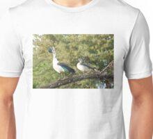 morning perch.  knob-billed duck. Unisex T-Shirt