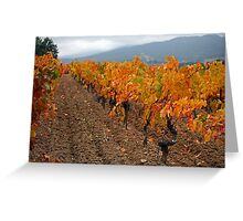Automn colours  Greeting Card