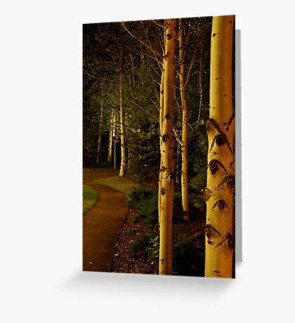night aspens.  snowmass, colorado Greeting Card