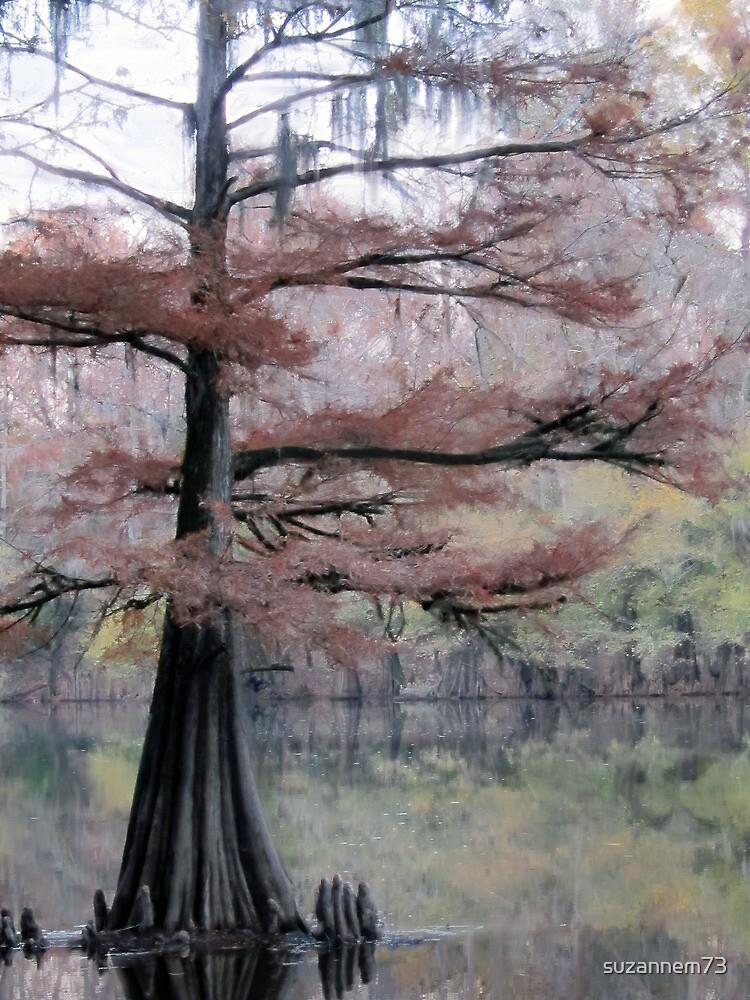 Autumn Cypress by suzannem73