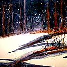 Landscape...On a Snowy Evening by © Janis Zroback