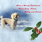 Merry Christmas From Buddy by Susan Blevins