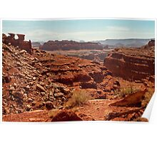 View from atop Shafer Trail Poster