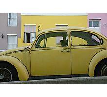 bo-kaap beetle Photographic Print