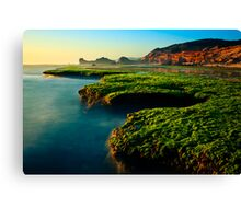 Low Tide at Sphinx Rock Canvas Print