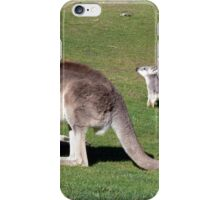 Tiny Wallaroo iPhone Case/Skin