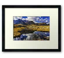 Stream Reflections Framed Print