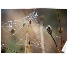 The webs we weave..... Poster