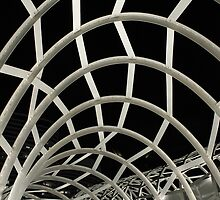 Web Bridge, Docklands by Kitspix