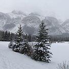 Walking in snow by zumi