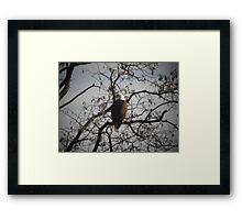 THIS SUNSHIES FEELING GOOD TODAY Framed Print