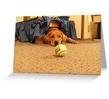 .......ball.......ball, my ball! Greeting Card