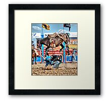 Rodeo Rider 4 Framed Print