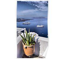 Fira Cactus 2011 Poster