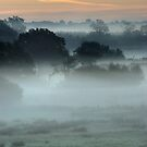 ~ Pre-dawn light and mist over water meadows by Christopher Cullen