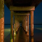 Brighton Jetty by night by Andrew Dickman
