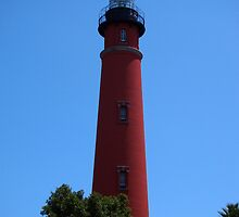Ponce Inlet Lighthouse  by Pietrina Elena Photography