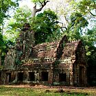 The Angkor Temples of Cambodia by Barb Mayer