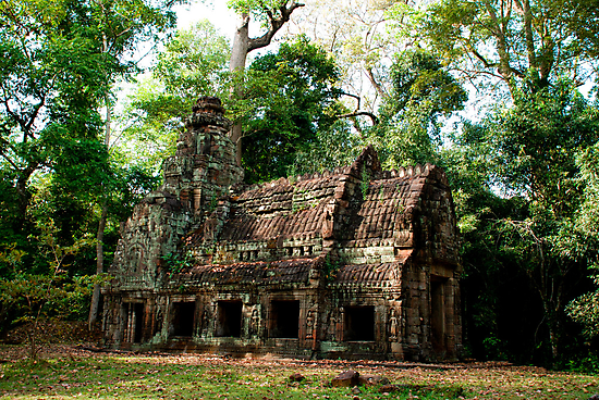 Temple in the Jungles - Cambodia by Barb Mayer