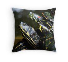 A [insert collective noun here] of Tortoises Throw Pillow