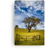 Earth and Air Canvas Print