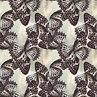 Surface Pattern Butterfly Wings by Circe Lucas