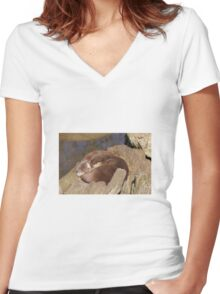 Otters Women's Fitted V-Neck T-Shirt