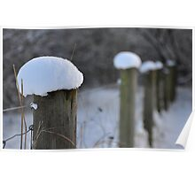 Snow Capped Poster