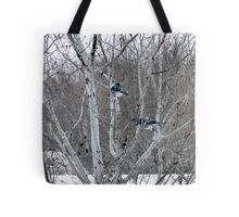 Aspens and Blue Jays Tote Bag