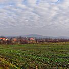 Rural Landscape by metronomad