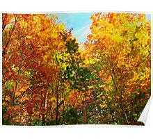 Energetic Leaves Poster