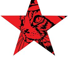 Furdell Catstro - Red Star by MiniKitty