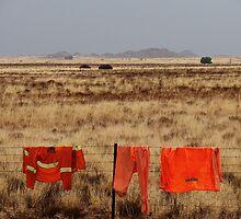Orange on the landscape by iamelmana