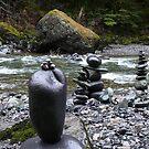 Nooksack Rock Sculpture by rferrisx