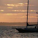 Sailing Across Bellingham Bay by rferrisx