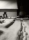 Winter Shadows by Mojca Savicki