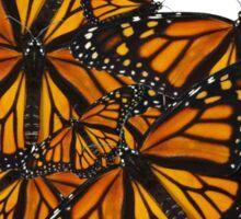 Monarch Butterflies - Friends I Sticker