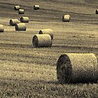 Straw Bales Hereford by Andrew Davoll